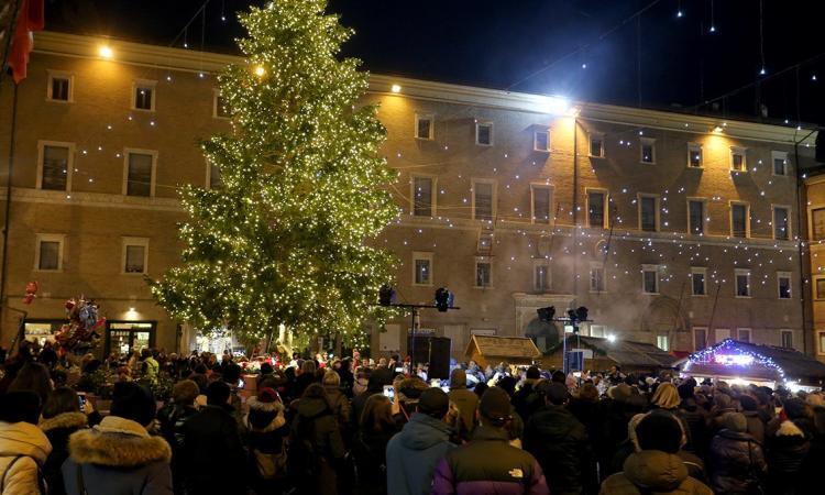 L'albero di Natale in piazza della Libertà a Macerata